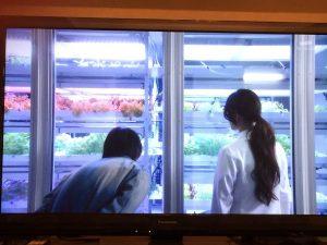 野菜25_2015-03-21 00.30.42