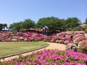 西山公園_2015-05-02 10.48.38